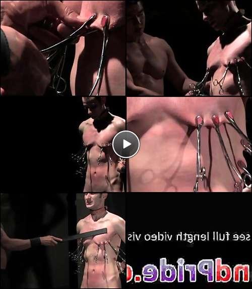 porn free video gay video